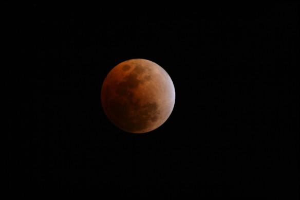 Total Lunar Eclipse 20-Feb-2008 - Benoit Guertin