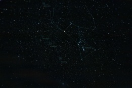 Constellation Orion and Open Clusters