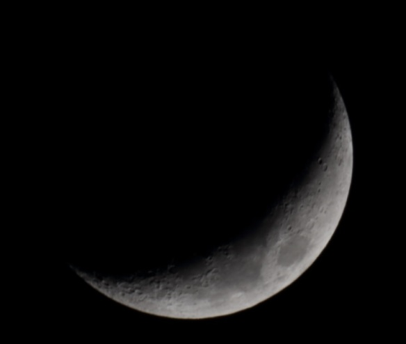 moon-raw-4